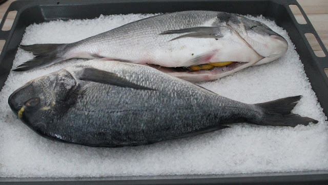 the filled sea bream come up coarse sea salt on a baking sheet